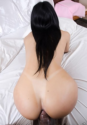 Anal Porn Pictures